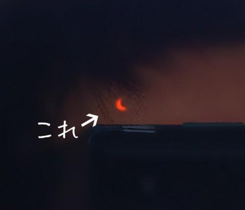 日食を写す男_アップ